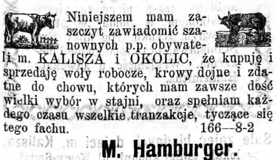 Reklama sprzedaży wołów Gazeta Kaliska 1893